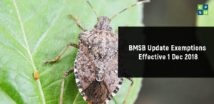 BMSB Update exemptions effective 1 Dec 2018