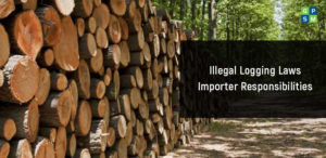 Illegal Logging Laws Importer Responsibilities